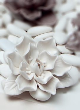 Fiore magnolia porcellana