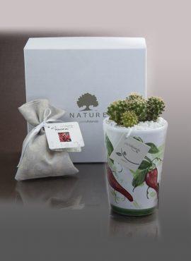 Bonsai caspo alto in ceramica peperoncino