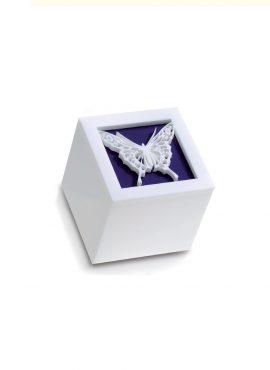 Scatola Cubo Plexi farfalla